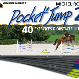 Pocket Jump 2